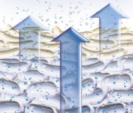 Illustration of natural moisture factors evaporating out through the skin