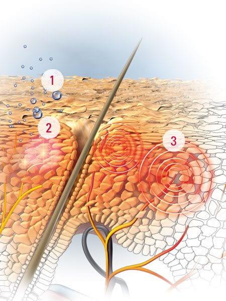 Healthy Scalp Natural Treatments